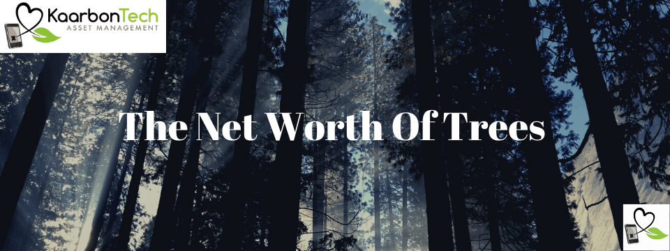 The Net Worth Of Trees,             Map Your Assets